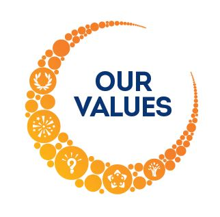 values icon