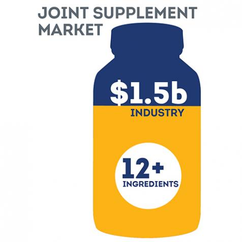 Joint Supplement Market