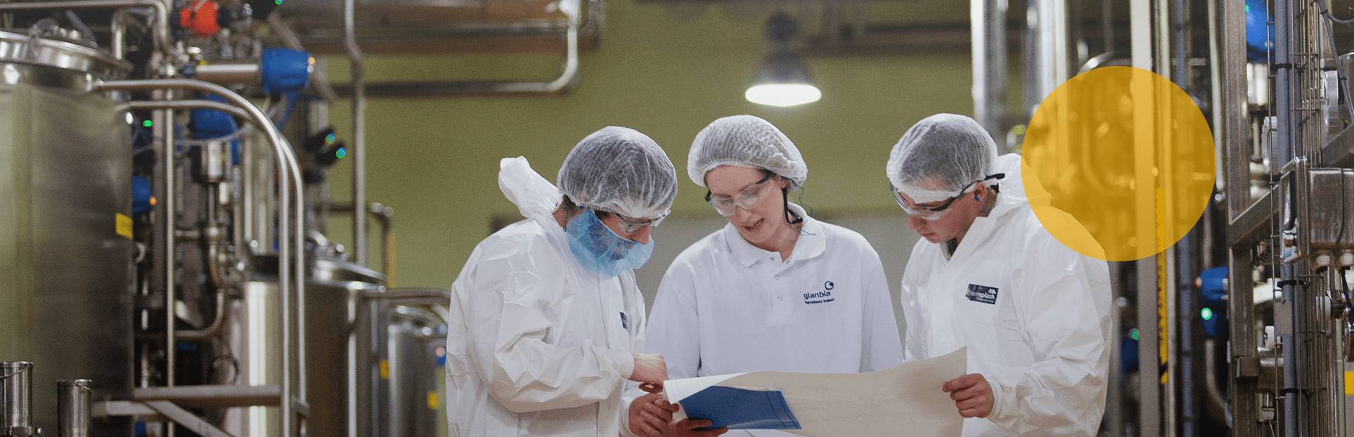 GN employees in cheese plant