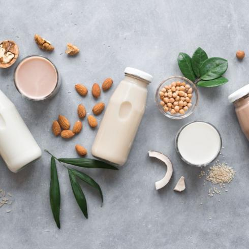 Top 5 plant-based protein trends for 2020 Glanbia Nutritionals